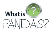 panda-question-header
